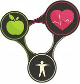 stock photo of cardiovascular  - Health triangle - JPG