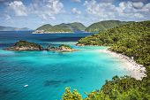 stock photo of virginity  - Trunk Bay - JPG