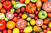 foto of plum tomato  - colorful tomatoes - JPG