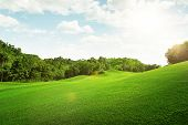 picture of grassland  - panoramic view of nice green hill on blue sky background - JPG