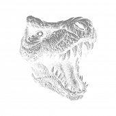Tyrannosaurus Dinosaur . Hand drawn. Vector eps 8