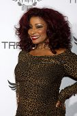 LOS ANGELES - JAN 23:  Chaka Khan at the Annual Trans4m Benefit Concert at Avalon on January 23, 201
