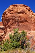 Garden Gnome Rock Formation Canyon Arches National Park Moab Utah