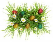 Easter eggs,flowers and grass isolated on white