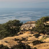 California's Torrey Pines