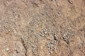 Clay Outdoor Texture