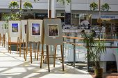 Exhibition Of Watercolor Pictures