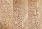 Natural Oak Wood Surface Hight Detailed