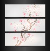 Design Sakura