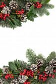 Christmas and winter background floral border with snow, holly, ivy, mistletoe, pine cones and fir o