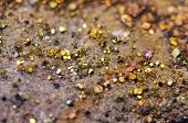 Fantastic Background, Magic Of A Stone, Rainbow In Metal Rock (big Collection ).macro