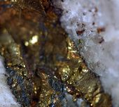 Golden Background, Rather Unique Macro Photo A Rare Nugget, For Your Bright Golden Successful Busine