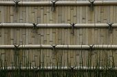 Japan, Himeji, Himeji Koko-en Gardens, split bamboo wall, close-up