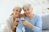 pic of cheers  - Cheerful senior couple cheering with glass of wine - JPG