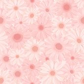 Seamless background with pink gerbera flowers. Vector illustration.