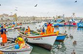 PISCO, PERU, MAY 21, 2014 - The picturesque fishermen's wharf of San Andres. Fishermen unload caught