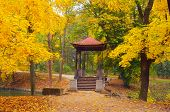 Autumn Landscape with Gazebo in the Park