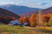 Autumn landscape with colorful forest. Hut in the mountains. Sunny Day