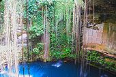 stock photo of cenote  - The inside of a Mexican Cenote - JPG