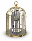 Gold Cage with Microphone (clipping path included)