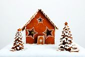 The Hand-made Eatable Gingerbread House And New Year Trees With Snow Decoration