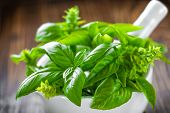 foto of crusher  - Fresh basil in a mortar on a wooden table - JPG