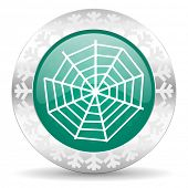 spider web green icon, christmas button
