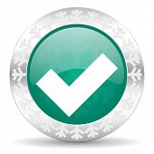 accept green icon, christmas button, check sign