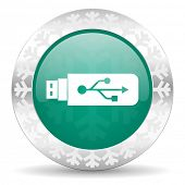 usb green icon, christmas button, flash memory sign