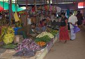 Vegetable Vendors