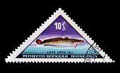 Mongolia 1962