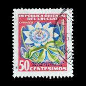 Uruguay 1956