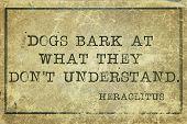 Dogs Bark Print