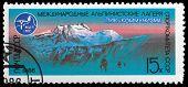 Alpine Mountain Camp