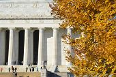 Autumn in Washington DC - Yellow Autumn leaves with Lincoln Memorial background