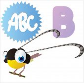 B is for vector cute cartoon isolated Bird of Paradise