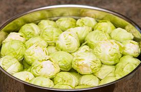 picture of steelpan  - Raw sprouts in a pan of water - JPG
