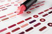 picture of lipstick  - Lipstick on color palette - JPG
