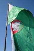 Commune Flag Of The Main City Of Slovenia-Ljubljana  poster