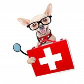 picture of veterinary  - chihuahua dog as a medical veterinary doctor with stethoscope and first aid kit behind a white and white banner isolated on white background - JPG
