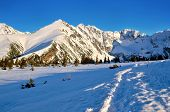picture of snowy hill  - Snowy trail leading to the Gasienicowa valley in National Park in the Tatra Mountains Poland - JPG