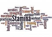 Stamina Is Staying Power Or Enduring Strength, Word Cloud poster