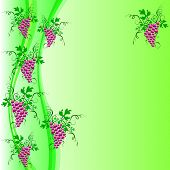 Background Of Grapes
