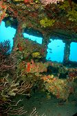 Inside the Wheelhouse of a Shipwreck
