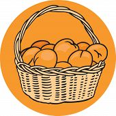 Basket of Oranges