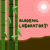 Text Sign Showing Academic Laboratory. Conceptual Photo Where Students Can Go To Receive Academic Su poster