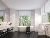 Luxurious Bathroom With Natural Views 3d Render,the Room Has Black Tile Floors, White Marble Walls,  poster