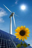 Solar Panels, Wind Turbine And Sunflower Against A Sunny Sky
