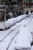 Cars Under Snow
