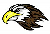 picture of falcons  - Cartoon falcon head for mascot or tattoo design - JPG